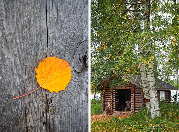 Finlande Linnansaari parc national
