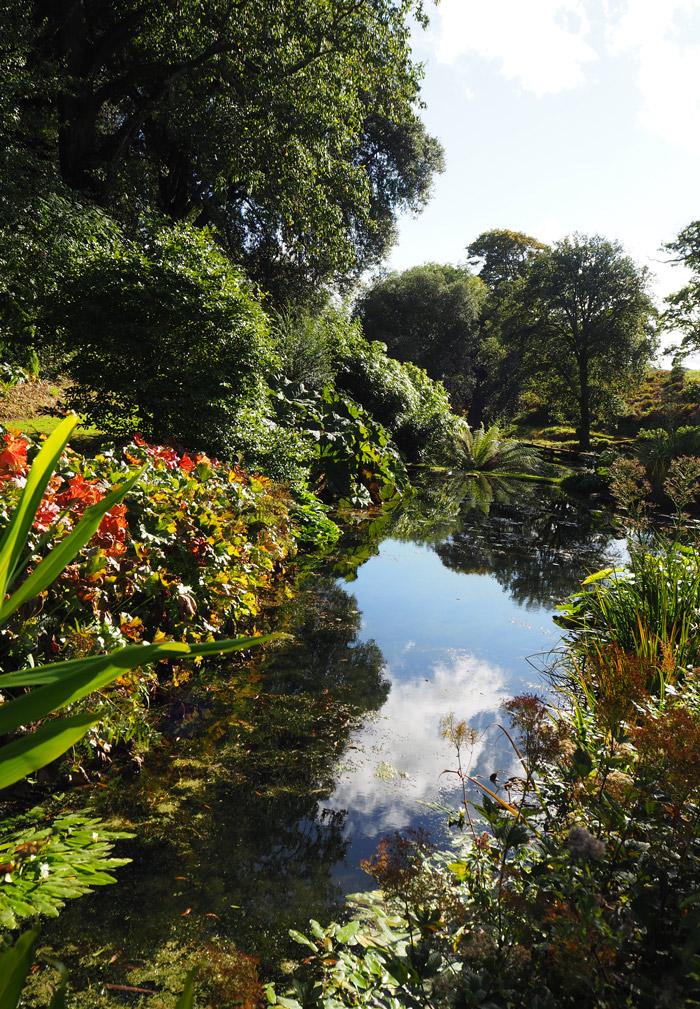 Jardins Tregothnan cornouailles