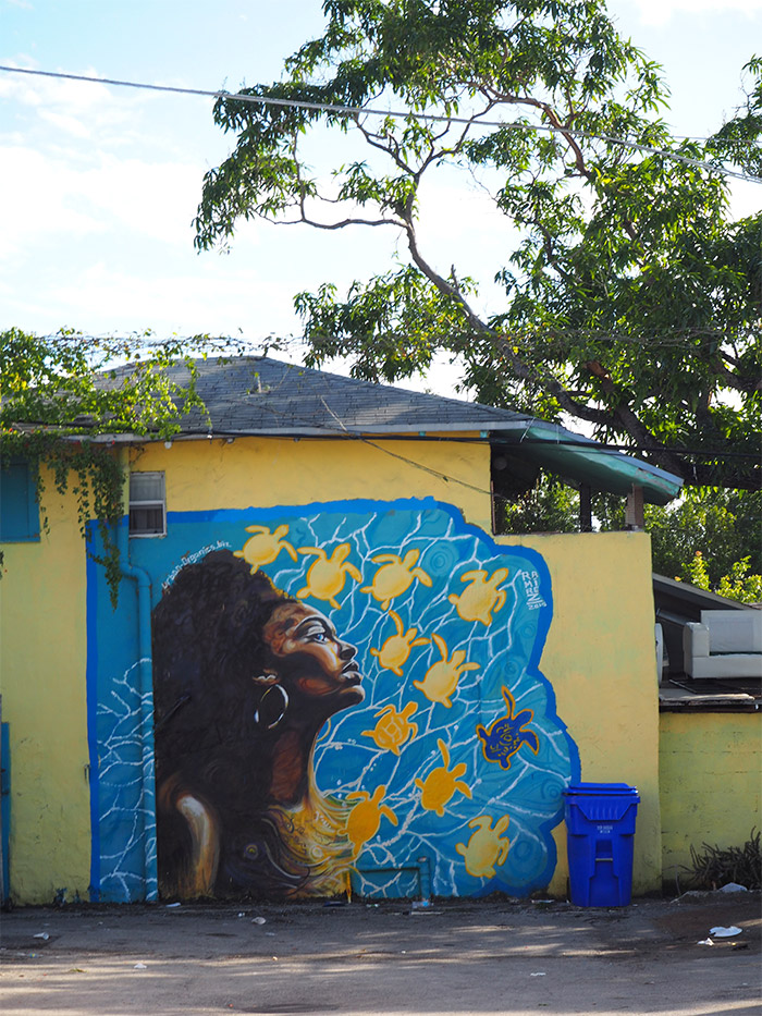 Street art Ramirez Little Haïti