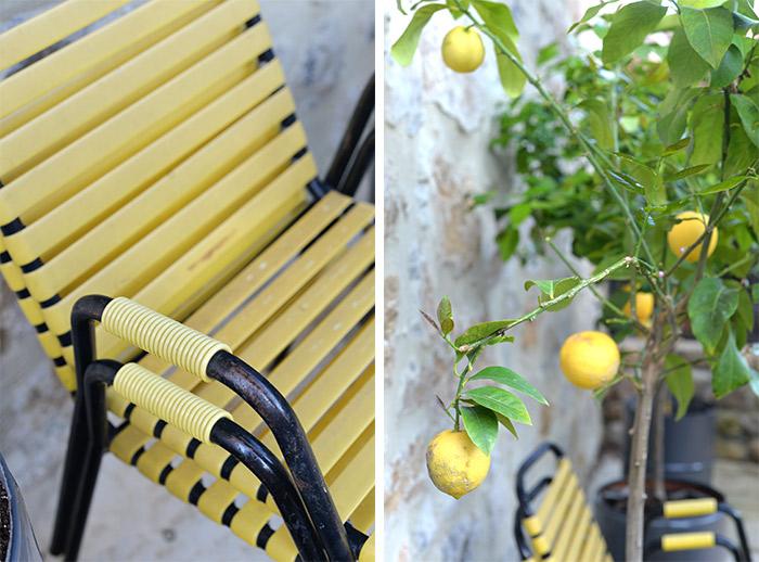 citron vans jardin 35 mai