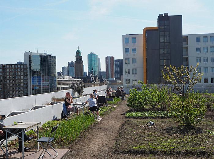 Op het dak terrasse Rotterdam