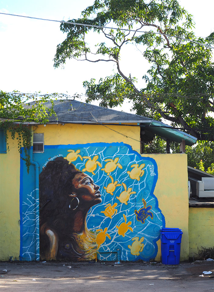 Little Haiti Ramirez street art