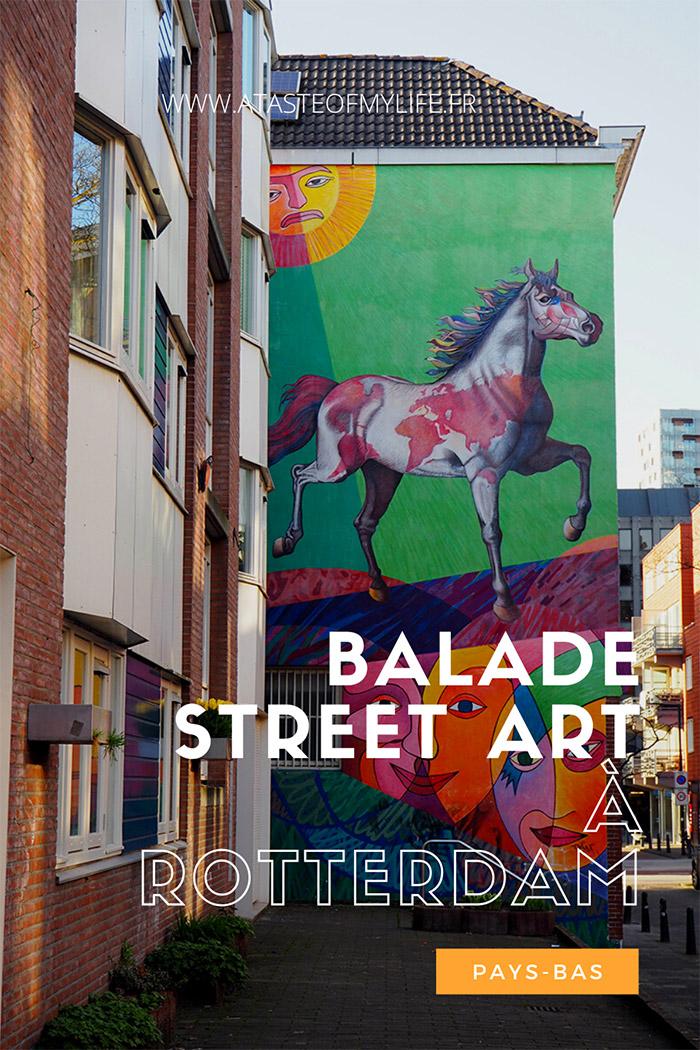 balade street art à Rotterdam