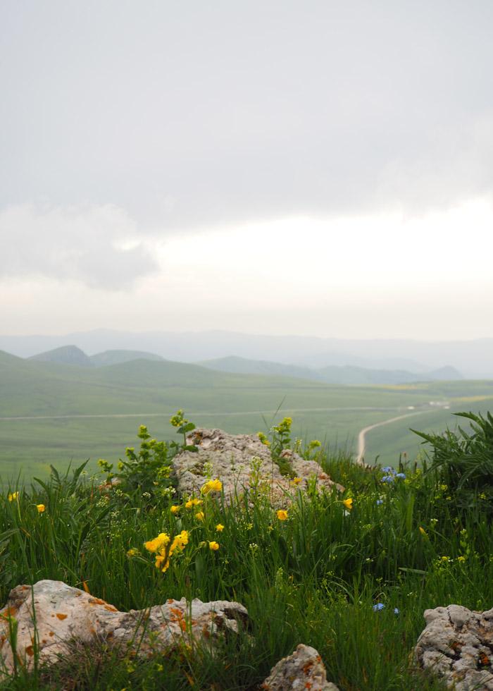 yell extreme park armenia