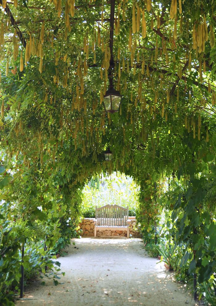 jardin du chateau de berne lorgues