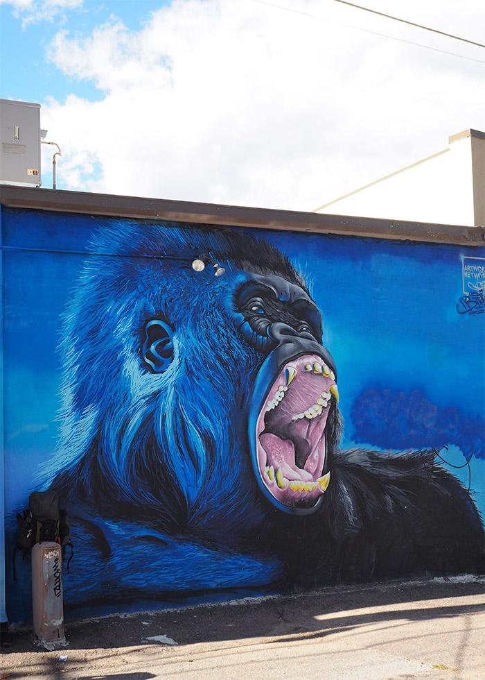 Denver street art Santa Fe