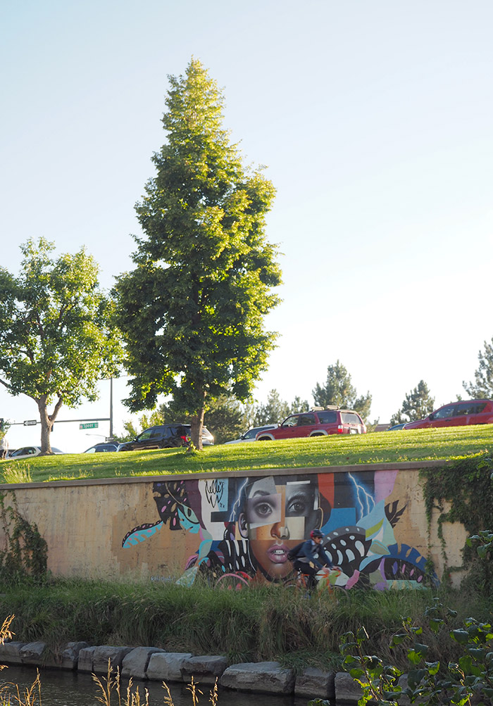 Denver street art cherry creek trail