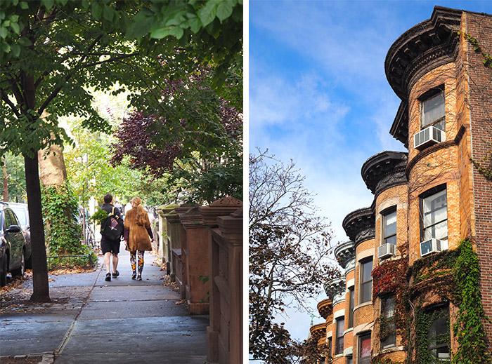 brooklyn maisons prospect park