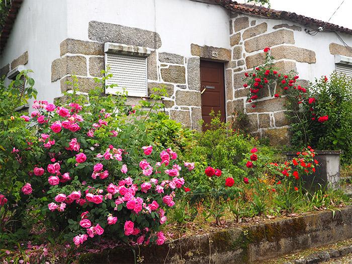 portugal maison viseu