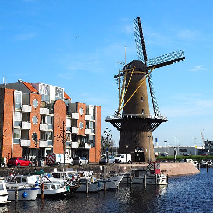 moulin delfshaven rotterdam