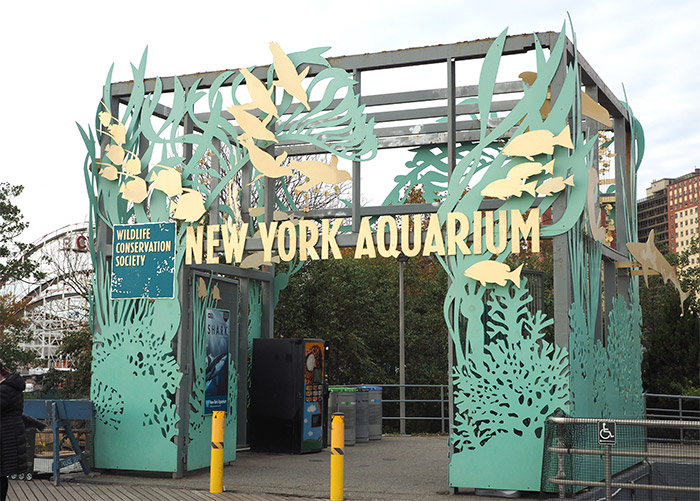 aquarium coney island