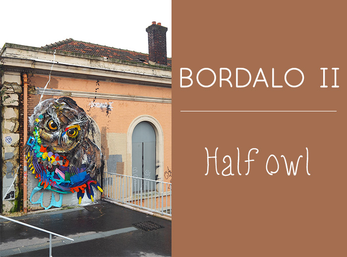 half owl bordalo II paris