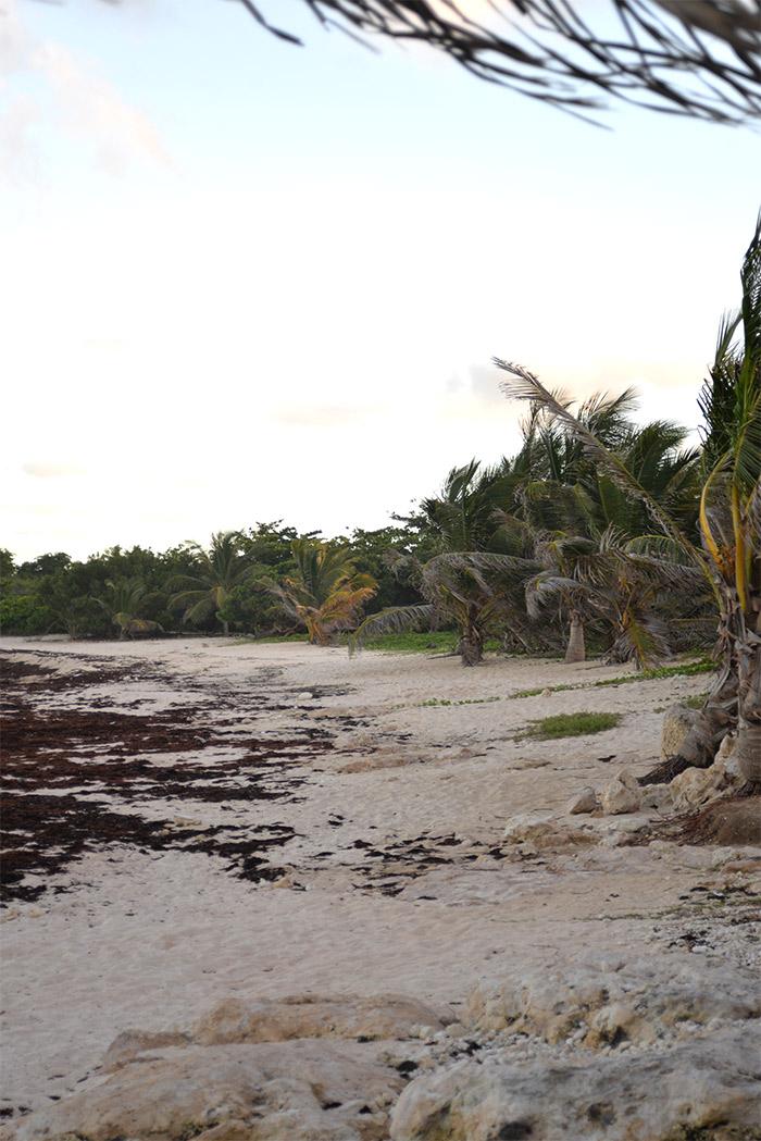 plage anse à l'eau guadeloupe