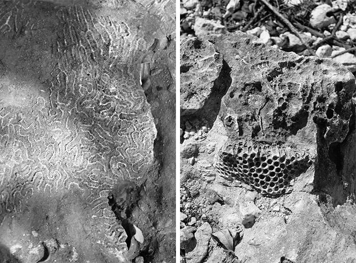 rocher sentier randonnee guadeloupe trou coco