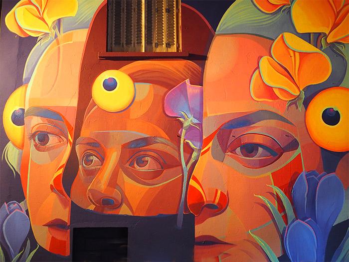 GLeo Lyon Peinture Fraîche street art