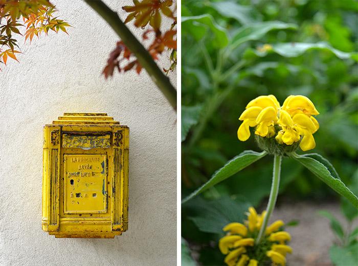 jardin carcassonne maison vintage