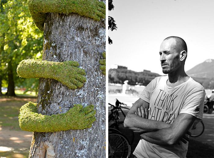 tree hug mr plant annecy paysages
