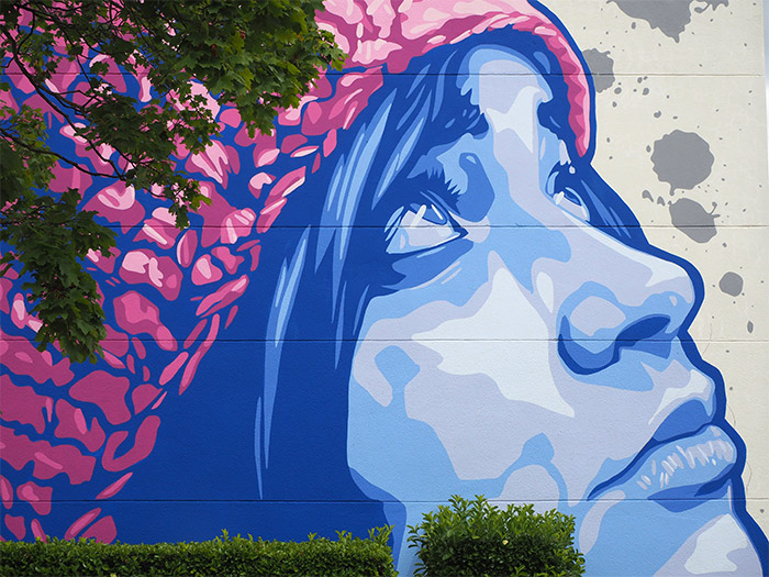 Viza STREET ART ROCHE LA MOLIERE