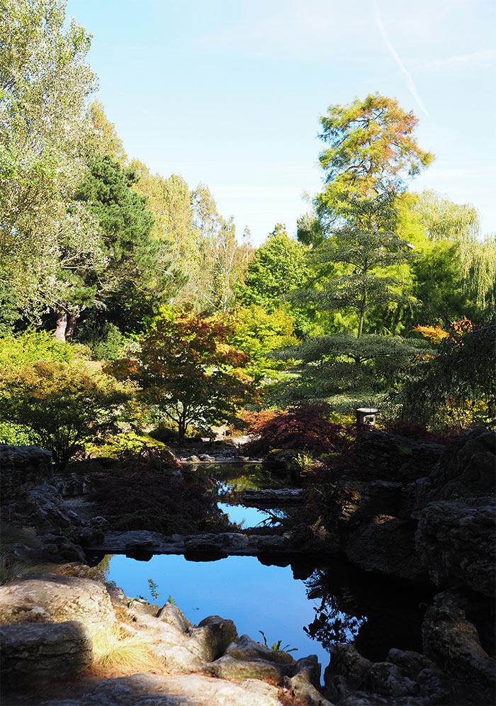 manoir samares jardin japonais