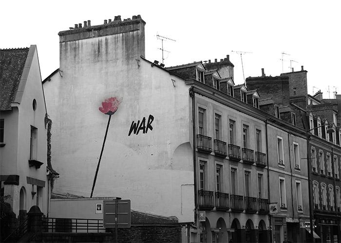 rennes War coquelicot fleur