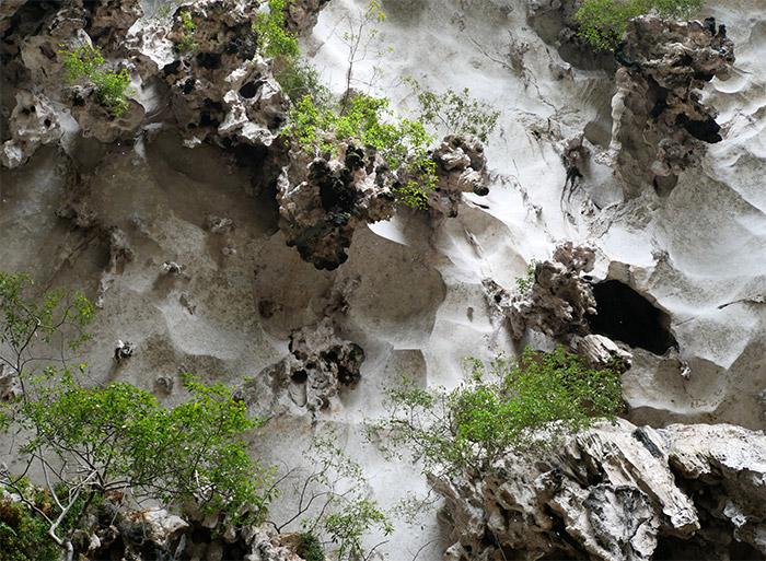 Malaisie grottes Batu hindou