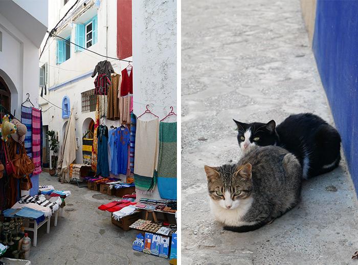 Maroc Asilah chats
