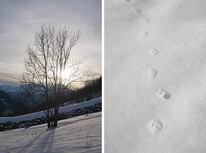 neige raquettes vaujany oisans