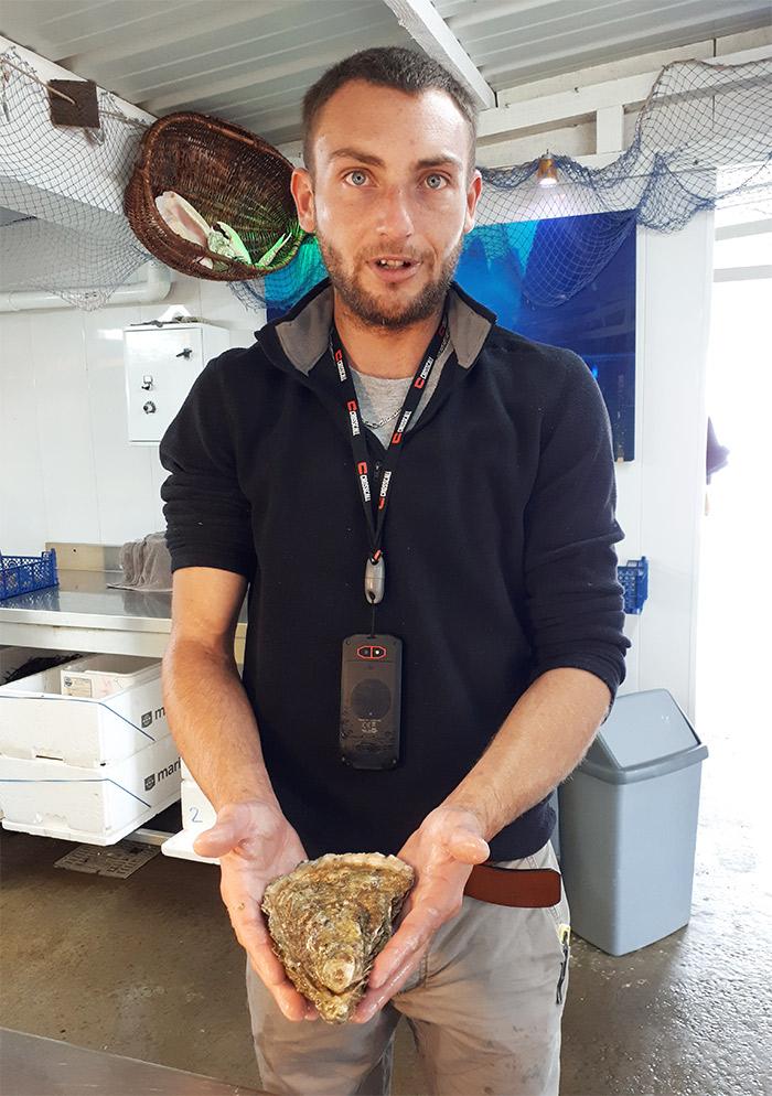 dégustation fruits mer cotes d'armor huître