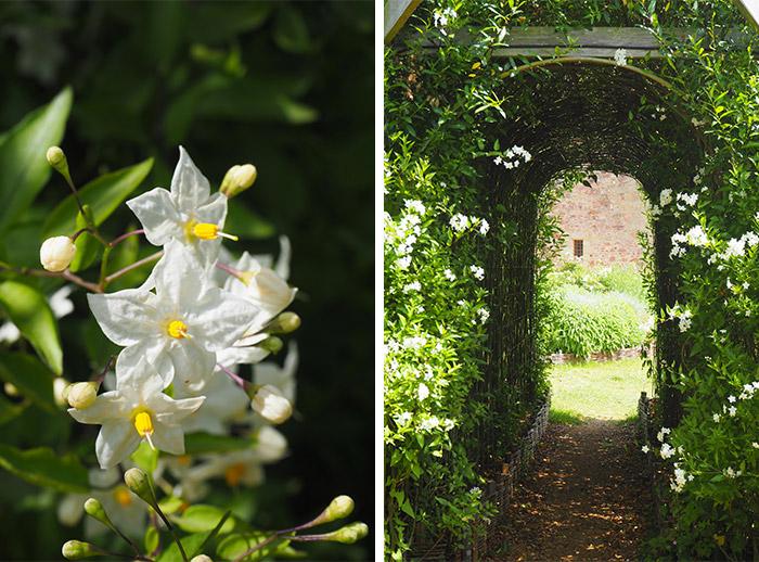 la roche jagu jardins chateau