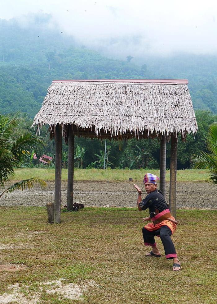homestay habitant malaisie