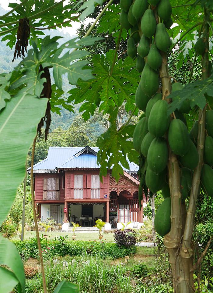 perak homestay labu kubong house