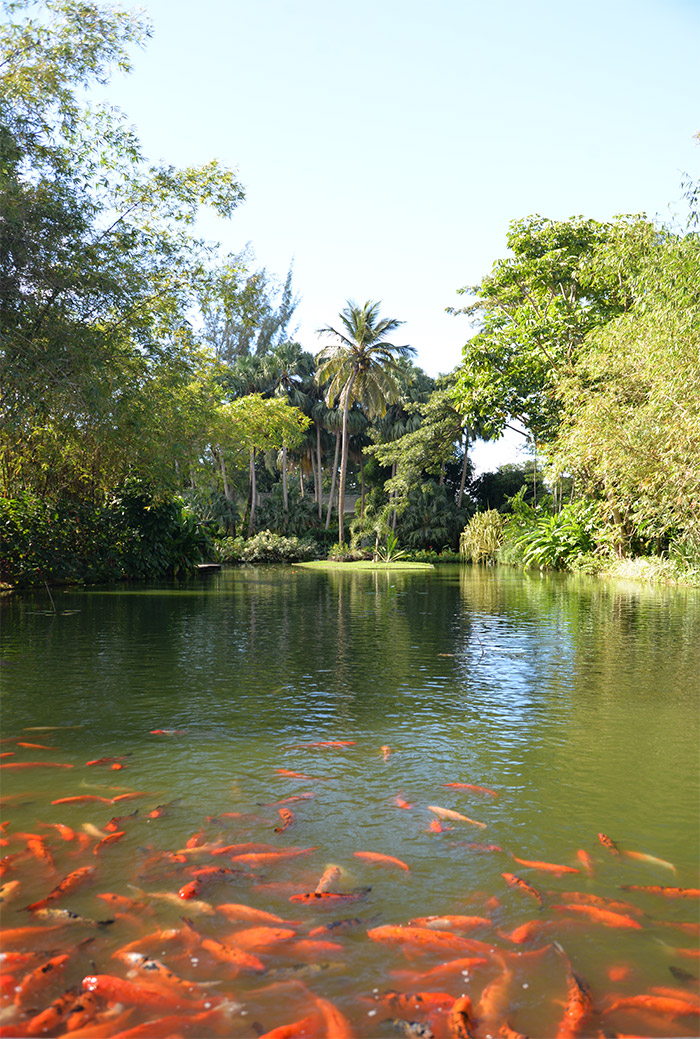 guadeloupe jardin botanique deshaies