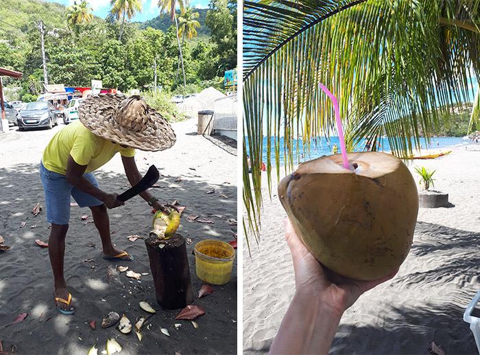 guadeloupe eau coco noix