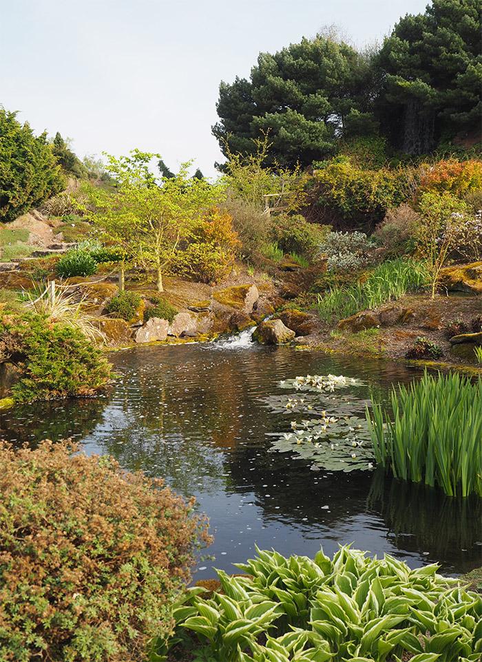 edimbourg ecosse jardin botanique