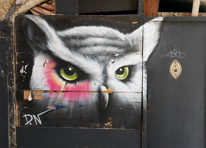 street art clermont ferrand hibou DN
