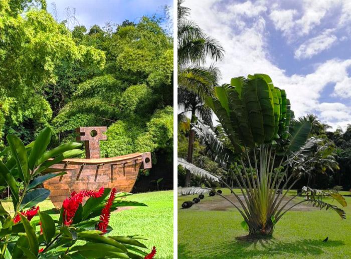 habitation saint etienne gros morne martinique jardin
