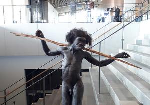 musee moesgaar danemark