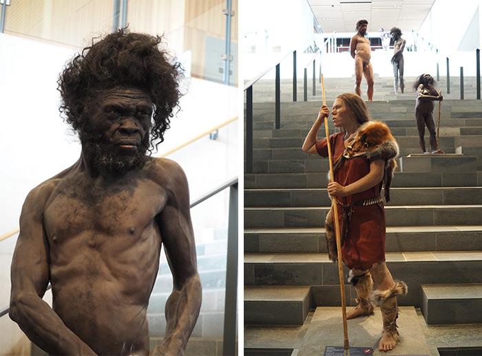 musee prehistoire moesgaard