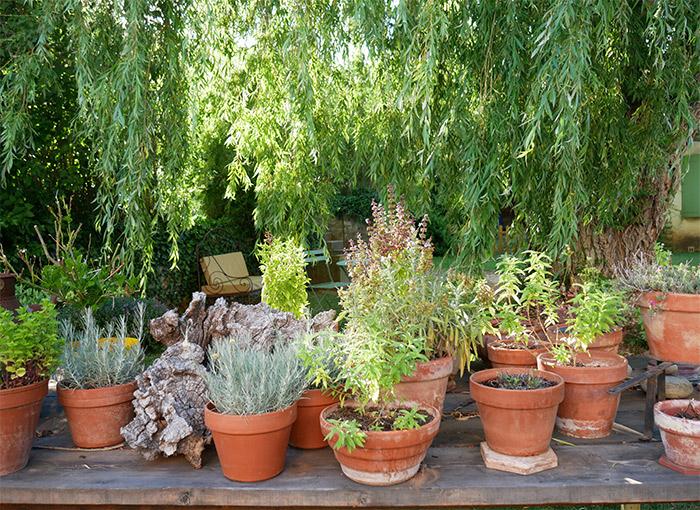 jardin maisons malzac quinson